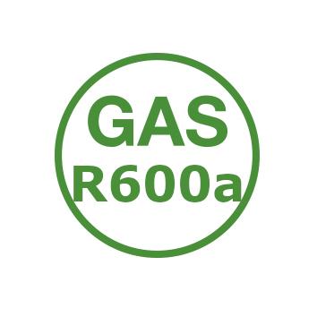 GasR600a.jpg